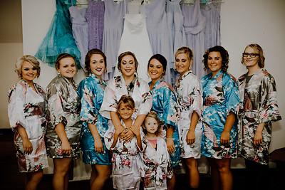 00201--©ADHPhotography2017--ClintBeguinShelbyCook--Wedding