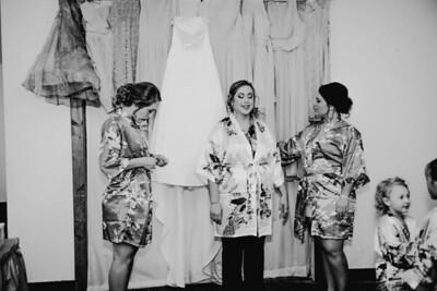 00180--©ADHPhotography2017--ClintBeguinShelbyCook--Wedding