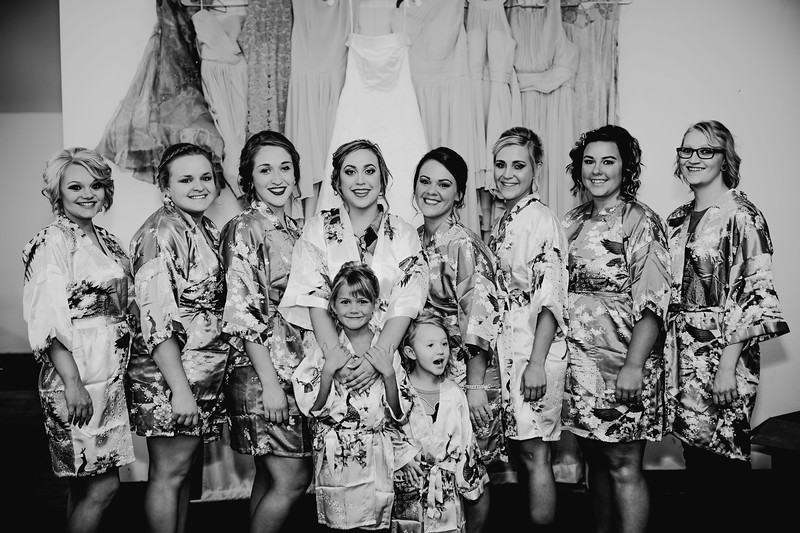 00194--©ADHPhotography2017--ClintBeguinShelbyCook--Wedding