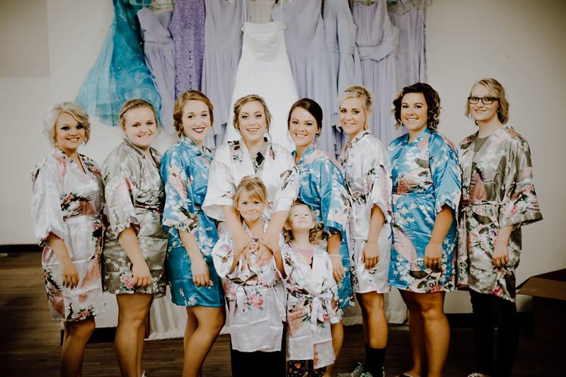 00185--©ADHPhotography2017--ClintBeguinShelbyCook--Wedding
