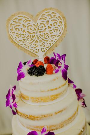 03219--©ADHPhotography2017--ClintBeguinShelbyCook--Wedding