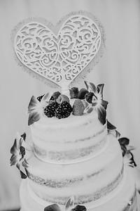 03222--©ADHPhotography2017--ClintBeguinShelbyCook--Wedding