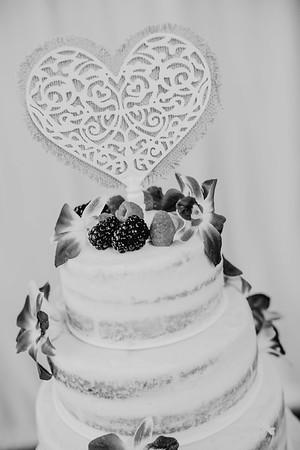 03218--©ADHPhotography2017--ClintBeguinShelbyCook--Wedding