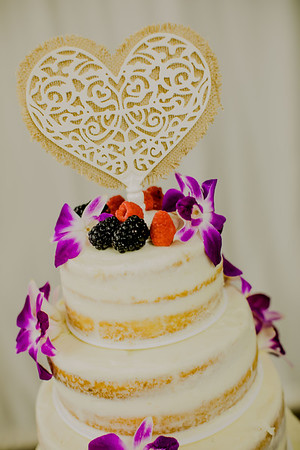 03217--©ADHPhotography2017--ClintBeguinShelbyCook--Wedding