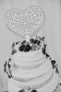 03220--©ADHPhotography2017--ClintBeguinShelbyCook--Wedding