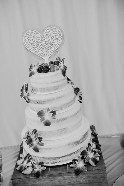 03230--©ADHPhotography2017--ClintBeguinShelbyCook--Wedding