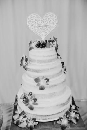03216--©ADHPhotography2017--ClintBeguinShelbyCook--Wedding