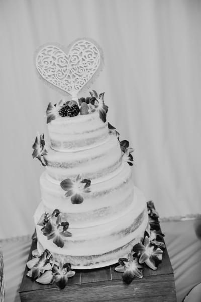 03236--©ADHPhotography2017--ClintBeguinShelbyCook--Wedding