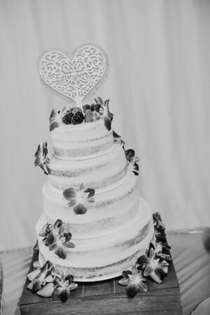 03232--©ADHPhotography2017--ClintBeguinShelbyCook--Wedding