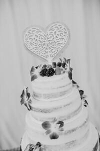 03226--©ADHPhotography2017--ClintBeguinShelbyCook--Wedding