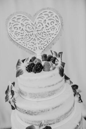 03224--©ADHPhotography2017--ClintBeguinShelbyCook--Wedding