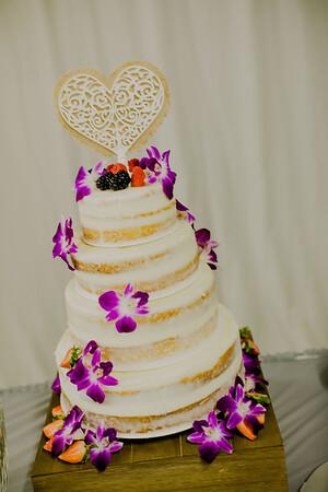 03235--©ADHPhotography2017--ClintBeguinShelbyCook--Wedding