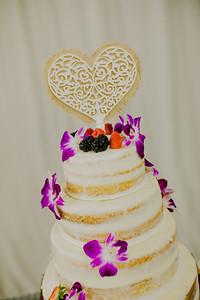 03225--©ADHPhotography2017--ClintBeguinShelbyCook--Wedding