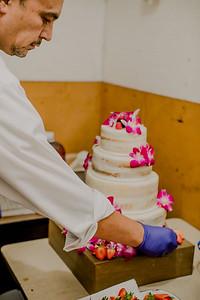 03127--©ADHPhotography2017--ClintBeguinShelbyCook--Wedding