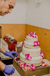 03125--©ADHPhotography2017--ClintBeguinShelbyCook--Wedding