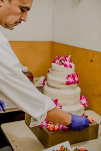 03129--©ADHPhotography2017--ClintBeguinShelbyCook--Wedding