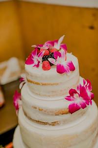 03137--©ADHPhotography2017--ClintBeguinShelbyCook--Wedding