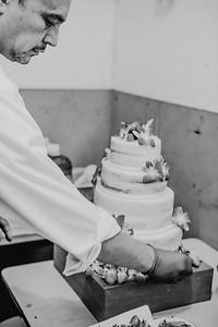 03130--©ADHPhotography2017--ClintBeguinShelbyCook--Wedding