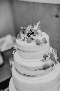 03136--©ADHPhotography2017--ClintBeguinShelbyCook--Wedding