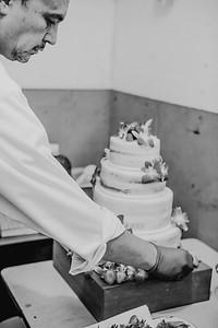03128--©ADHPhotography2017--ClintBeguinShelbyCook--Wedding