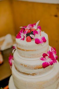 03135--©ADHPhotography2017--ClintBeguinShelbyCook--Wedding