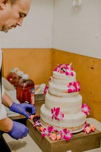 03123--©ADHPhotography2017--ClintBeguinShelbyCook--Wedding
