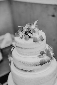 03138--©ADHPhotography2017--ClintBeguinShelbyCook--Wedding
