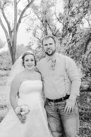 00882--©ADHPhotography2017--ClintBeguinShelbyCook--Wedding