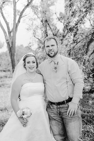 00884--©ADHPhotography2017--ClintBeguinShelbyCook--Wedding