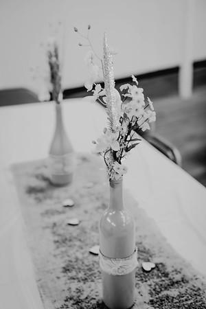 00256--©ADHPhotography2017--ClintBeguinShelbyCook--Wedding