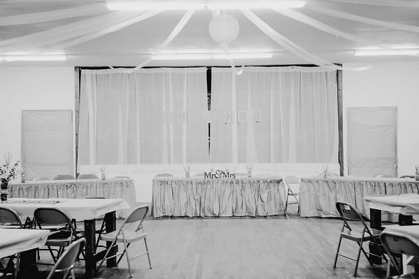 00272--©ADHPhotography2017--ClintBeguinShelbyCook--Wedding
