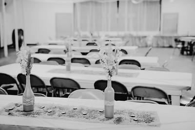 00260--©ADHPhotography2017--ClintBeguinShelbyCook--Wedding