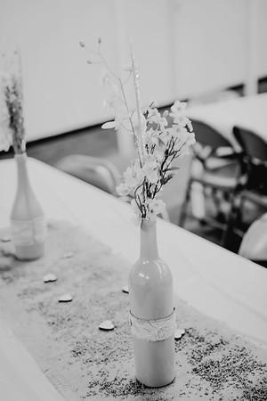 00254--©ADHPhotography2017--ClintBeguinShelbyCook--Wedding