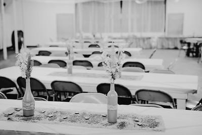 00262--©ADHPhotography2017--ClintBeguinShelbyCook--Wedding