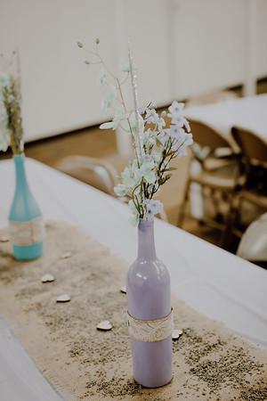 00251--©ADHPhotography2017--ClintBeguinShelbyCook--Wedding