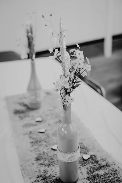 00258--©ADHPhotography2017--ClintBeguinShelbyCook--Wedding