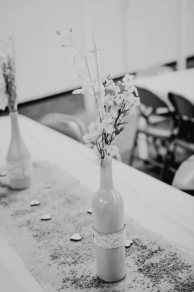 00252--©ADHPhotography2017--ClintBeguinShelbyCook--Wedding