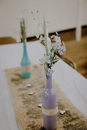 00255--©ADHPhotography2017--ClintBeguinShelbyCook--Wedding