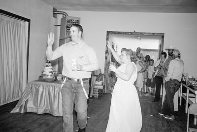 04428--©ADHPhotography2017--ClintBeguinShelbyCook--Wedding