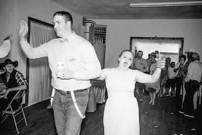 04434--©ADHPhotography2017--ClintBeguinShelbyCook--Wedding