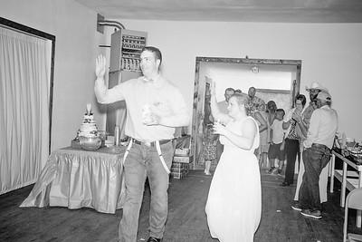 04426--©ADHPhotography2017--ClintBeguinShelbyCook--Wedding