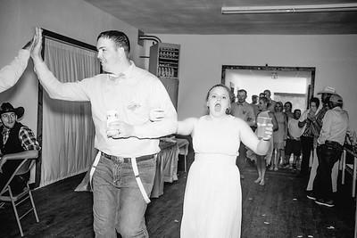 04432--©ADHPhotography2017--ClintBeguinShelbyCook--Wedding