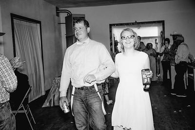 04422--©ADHPhotography2017--ClintBeguinShelbyCook--Wedding