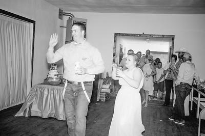 04430--©ADHPhotography2017--ClintBeguinShelbyCook--Wedding