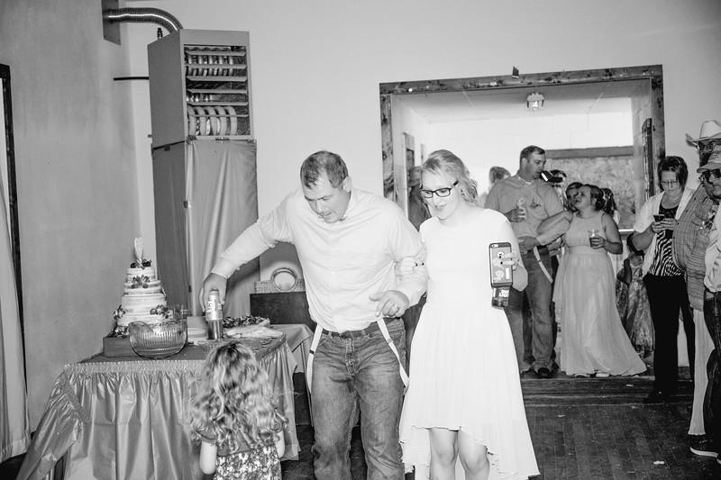04420--©ADHPhotography2017--ClintBeguinShelbyCook--Wedding