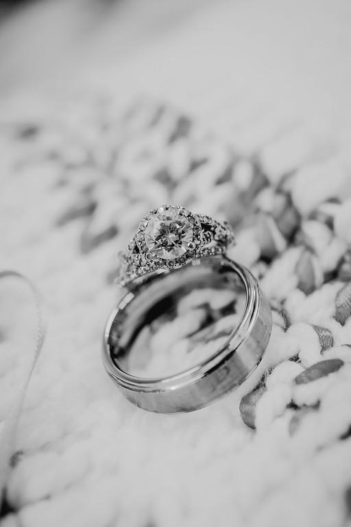 00014--©ADHPhotography2017--ClintBeguinShelbyCook--Wedding