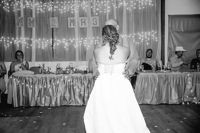 05344--©ADHPhotography2017--ClintBeguinShelbyCook--Wedding