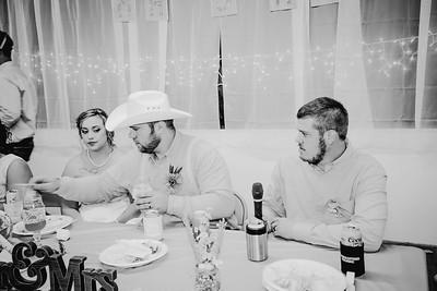 05068--©ADHPhotography2017--ClintBeguinShelbyCook--Wedding