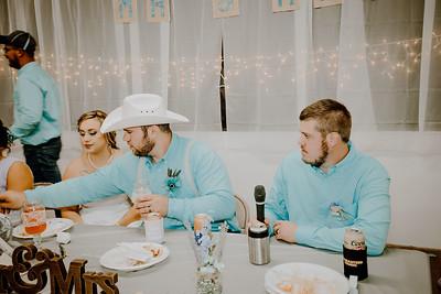 05065--©ADHPhotography2017--ClintBeguinShelbyCook--Wedding