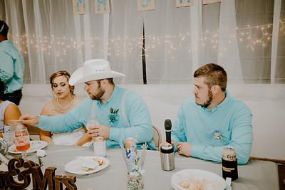 05067--©ADHPhotography2017--ClintBeguinShelbyCook--Wedding